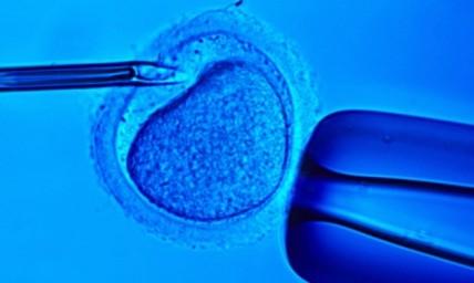 Άντρες που γεννήθηκαν με εξωσωματική τεχνική ίσως εμφανίσουν επίσης πρόβλημα γονιμότητας