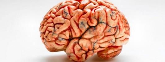 Επαναστατικό βήμα στην ανακάλυψη θεραπείας του Αλτσχάιμερ