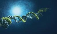 Bayer: Καινοτoμία για μια Καλύτερη Ζωή