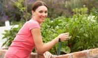 Το πράσινο χαρίζει χρόνια ζωής στις γυναίκες