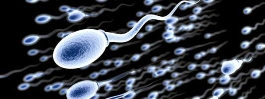 Γυμναστείτε για να βελτιώσετε την ποιότητα του σπέρματός σας!