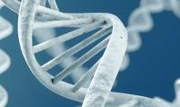 H CSL Behring στηρίζει την Έρευνα στη Νευροανοσολογία