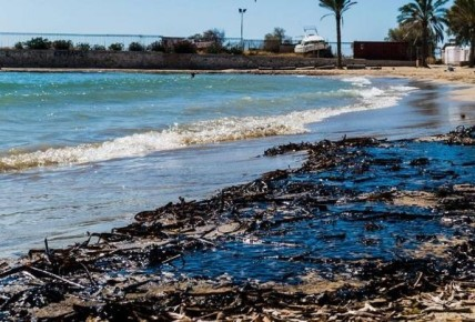 Δείτε σε ποιες ακτές δεν επιτρέπεται η κολύμβηση λόγω ρύπανσης