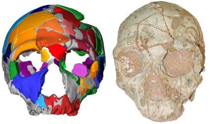 Ανακάλυψη: Το αρχαιότερο δείγμα Homo Sapiens είναι ελληνικό!